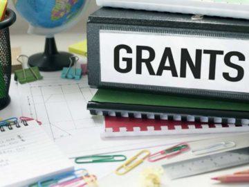Grant pentru instituțiile de învățământ