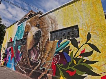 Oportunitate pentru tinerii interesați de pictură: concurs de decorare cu picturi murale