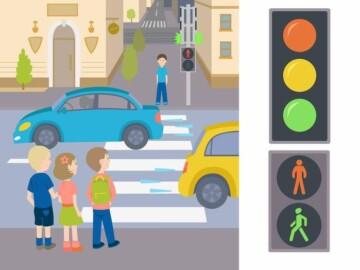 Regulile circulației rutiere