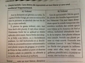 În atenția profesorilor de limba și literatura română